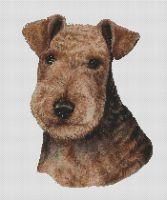 Black and Tan Lakeland Terrier PDF