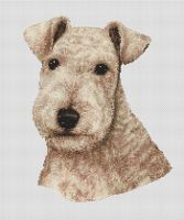 Wheaten Lakeland Terrier