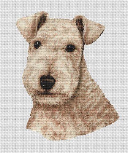 Wheaten Lakeland Terrier PDF