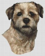 Wheaten Border Terrier PDF