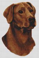 Fox Red Labrador PDF