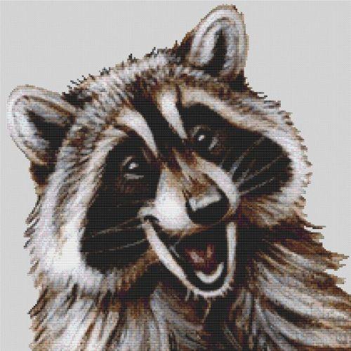 Happy Raccoon PDF