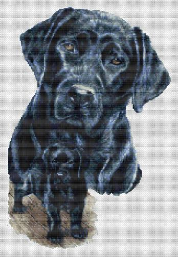 Black Lab and Pup PDF