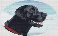 Black Labrador Retriever PDF