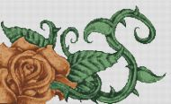 Chocolate Rose PDF