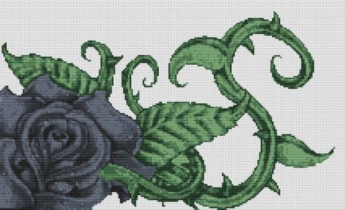 Black Rose PDF