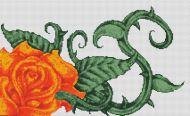 Orange Rose PDF
