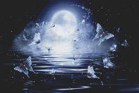 Moonlight Butterflies PDF