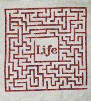 Life - Maze PDF